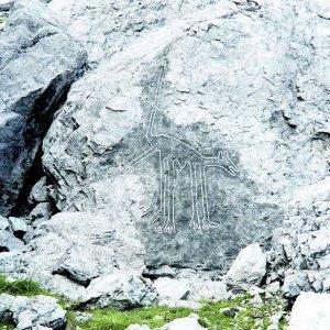 Nazca Wolf